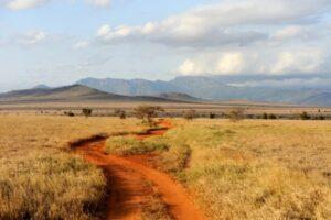 savannah-landscape-national-park-kenya-africa (Custom)-min (Custom)
